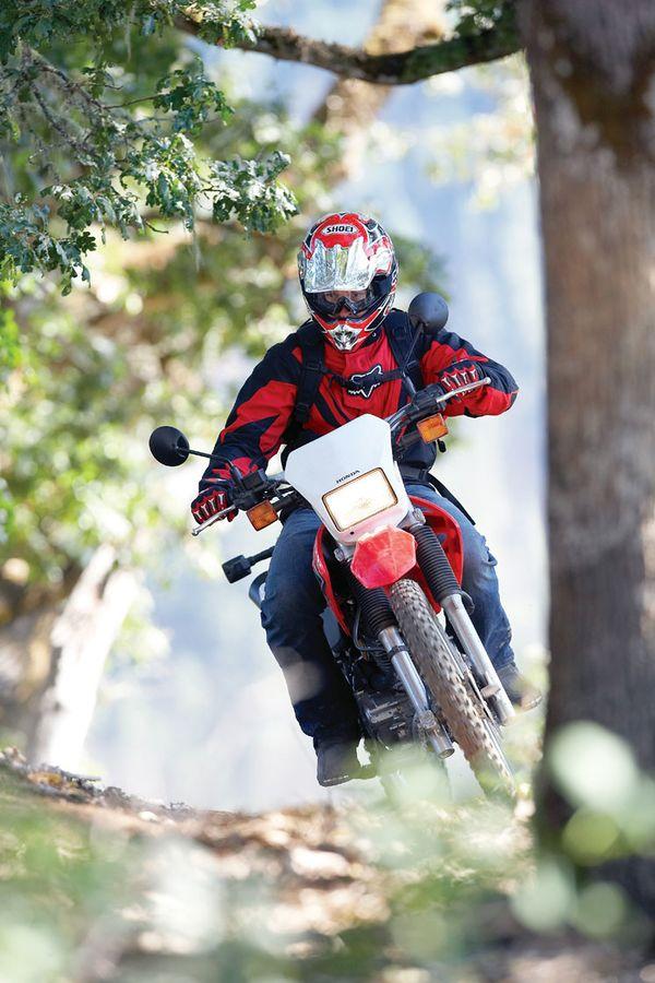 Honda CRF230 - CycleChaos