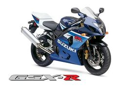 Marvelous Suzuki Gsx R600 History Specs Pictures Cyclechaos Ibusinesslaw Wood Chair Design Ideas Ibusinesslaworg